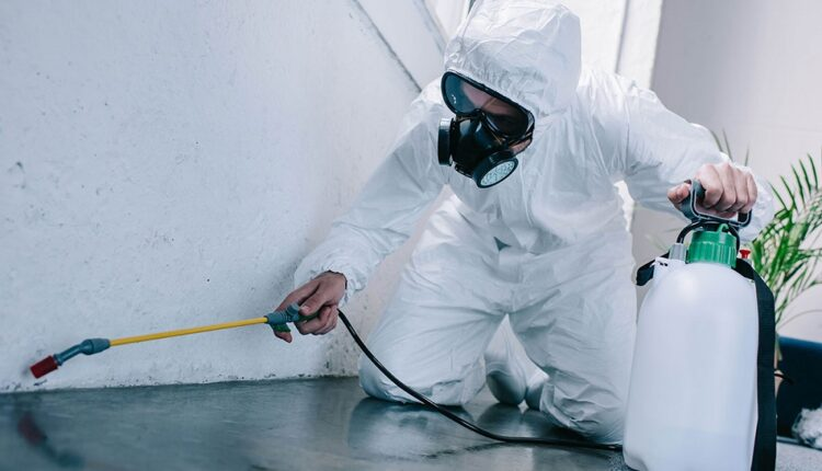 Importance Of Pest Control Management Services