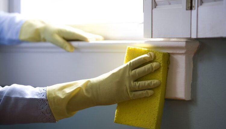 Tenancy Cleaning01