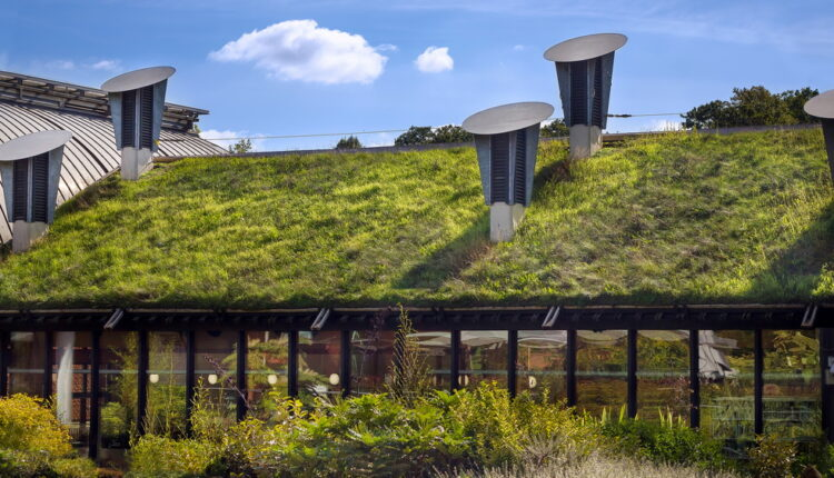 Green 'Living' Roof On Public City Library. Eco Friendly Buildin